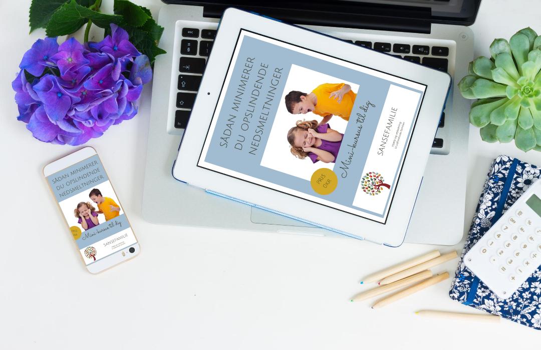 e-bog minimér opslidende nedsmeltninger